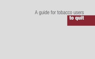 Tài liệu: A guide for tobacco users to quit (Nguồn: World Health Organization)